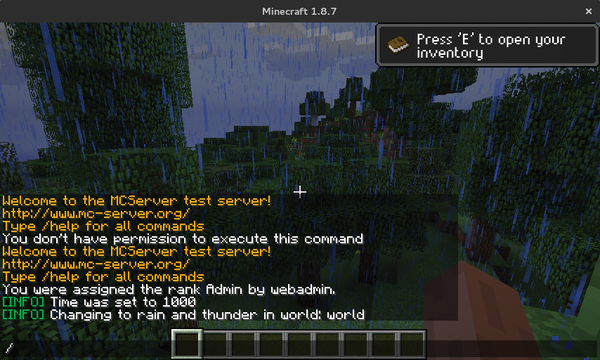 minecraft you dont have permission to use this command